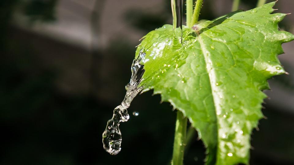 La necesidad de evaluar la aptitud del agua para riego